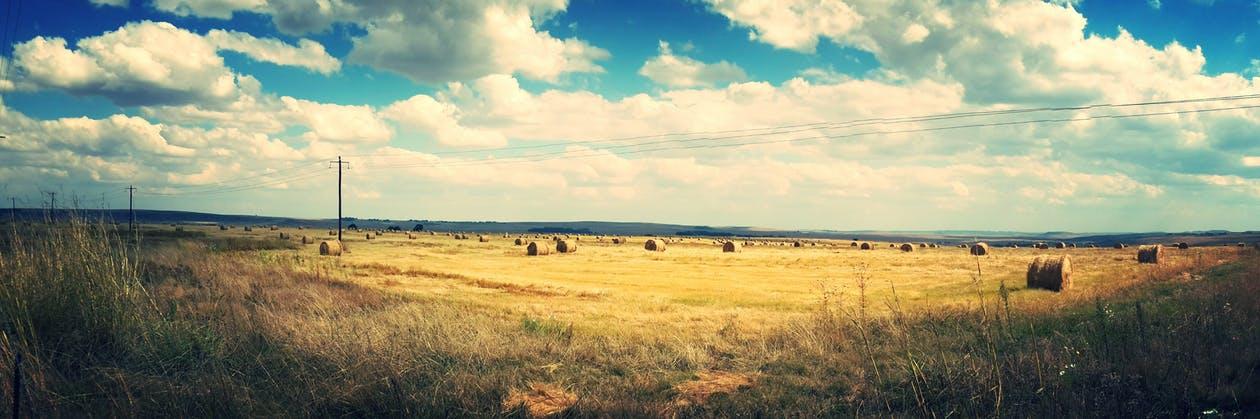 rural uk